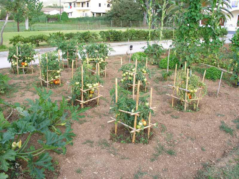 034 Villa Eleftheria Kitchen Garden accommodation in corfu